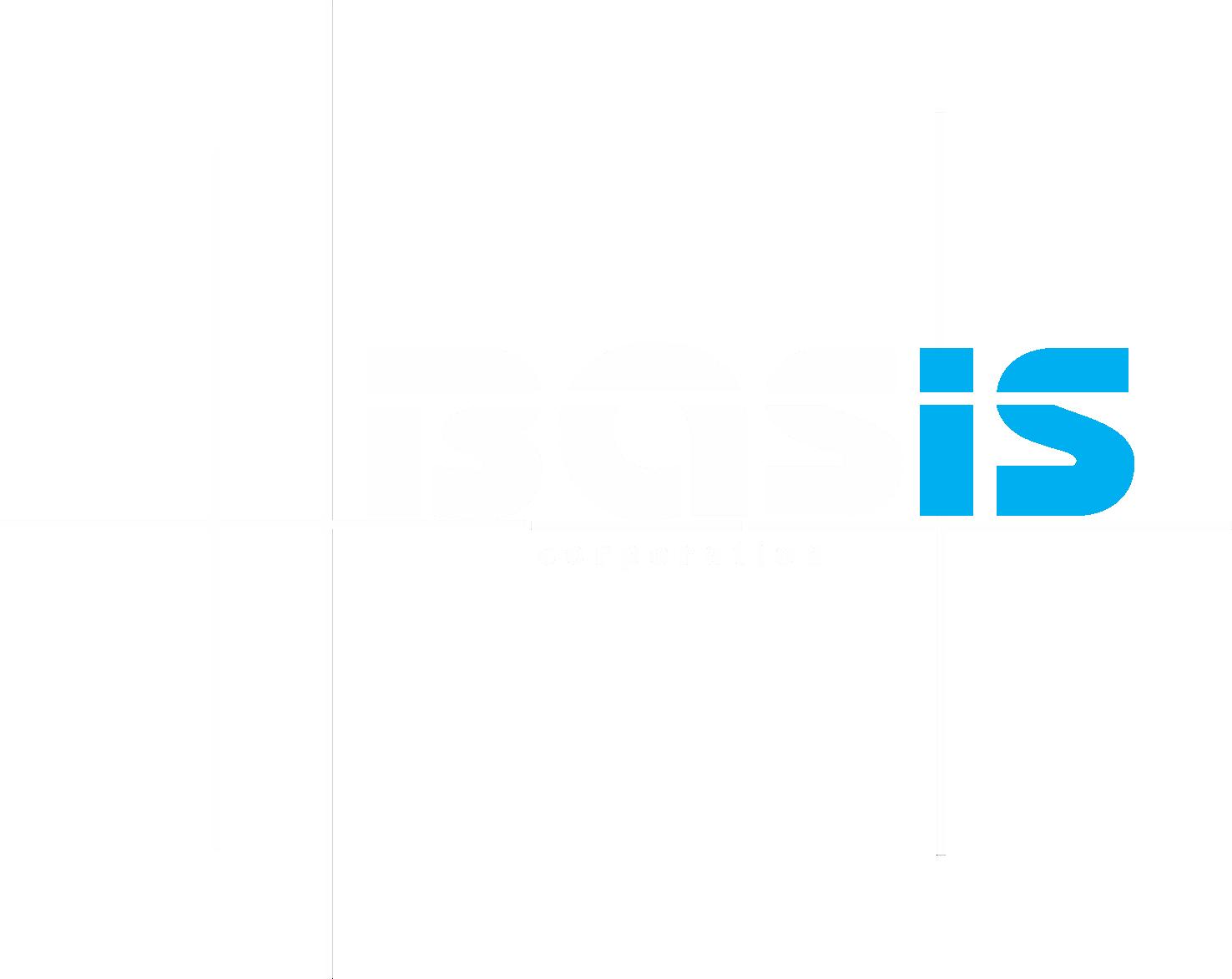 Basis Corporation
